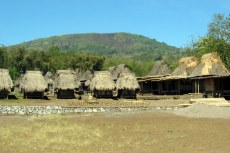 Bena traditional village, Ngada-1