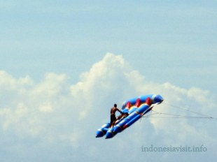 flying fish @ tanjung benoa