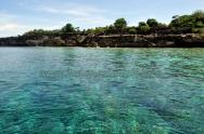 kambing island