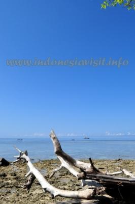 samalona beach
