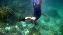 snorkeling @ samalona island