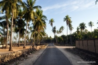 a cleanly Nemberala Road