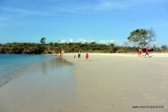 the pink beach of lombok