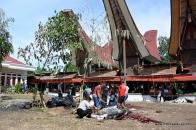 Slaughter of sacrificial animal (buffalo),Talung Lipu, 2014-Dec