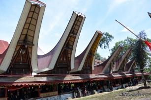 Semi permanent tongkonan at Rambu Solok Ceremony, 2014-Dec