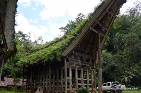 Toraja traditional house at Buntu Pune VIllage