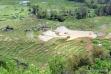 Batutumonga terrace rice fields